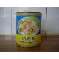 Buy cheap Mushroom Can Abalone Mushroom Product Code: ydaer_1 from wholesalers