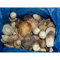 Buy cheap Frozen Mushroom IQF Boletus Edulis-Whole TC0205-1 from wholesalers