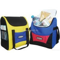 Cooler Bags/Ice Bag Cooler Bag