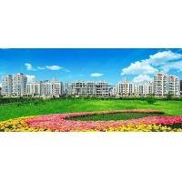 Buy cheap zhouyu Real Estate from wholesalers