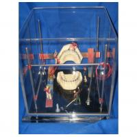 Buy cheap Dental Art Object ZYR-5008 from wholesalers