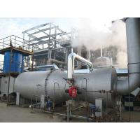 Environmental pro Large-scale incinerator complete equipment