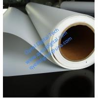 Reverse Printing water base Backlit PET Film 100um