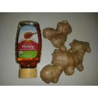 Buy cheap Natural Herbal Immunity Boost Ginger and Honey from wholesalers