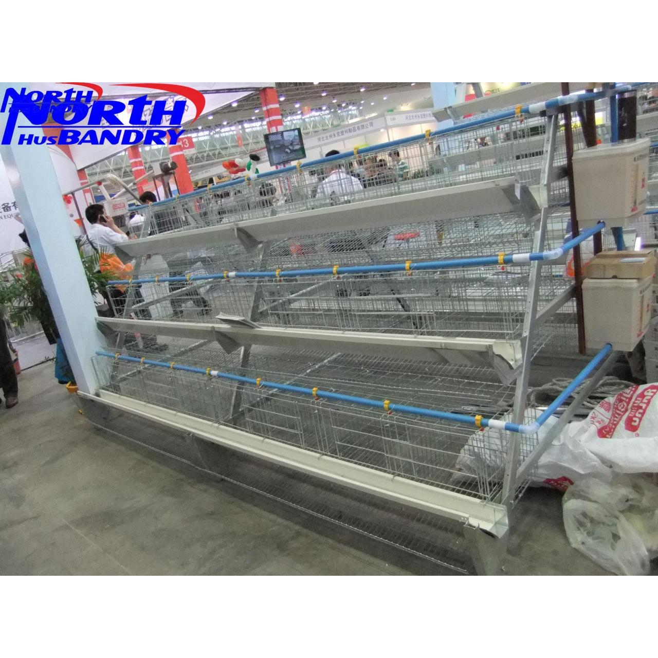 Buy cheap Automated Poultry Farm Equipments, Poultry Farm Machinery from wholesalers