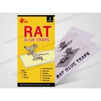 Buy cheap rat glue trap (paper board) from wholesalers