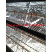 A type layer cage A type egg chicken layer cage