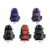 Buy cheap Travel Bag Backpack Sports Bag Sports Gym Bags Hiking Sports from wholesalers