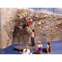 Buy cheap Climbing holds Mobile climbing wall holds from wholesalers