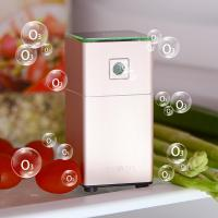 Buy cheap Multi-functional Ozone Refrigerator Sterilizer (Rose Gold) from wholesalers