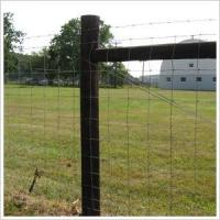 Buy cheap High Tensile Field Fence from wholesalers