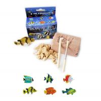 Buy cheap Sml. Plastic Tropical Fish Excavation Kit/Dig it Out Toys product
