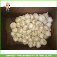Buy cheap 2017 New Crop Fresh Snow White Garlic Mesh Bag In Carton For Sale from wholesalers