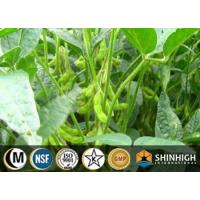 Buy cheap Botanical extract| Soybean extract| Isoflavones from wholesalers