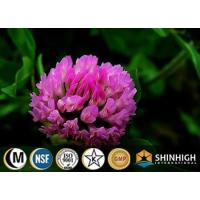 Buy cheap Botanical extract, herbal extract, plant extract,natural ingredients red clover extract from wholesalers