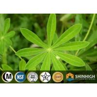Buy cheap Fenugreek saponins extract| 4-hydroxyisoleucine from wholesalers