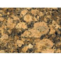 Buy cheap Granite Tiles & Slabs Giallo Fiorito Granite from wholesalers