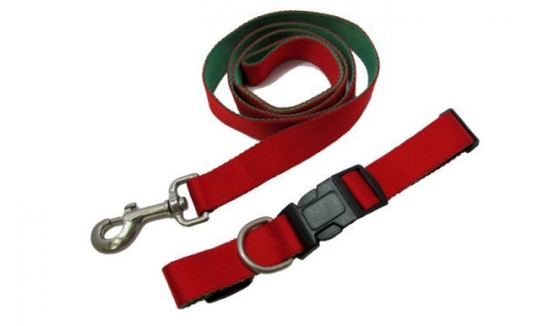 Buy cheap Pet Collar With Leash BL-30 BC-30 from wholesalers