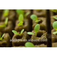 Buy cheap Agricultural Grow Cubes Rockwool Hydroponic from wholesalers