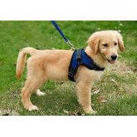 Buy cheap Copatchy No Pull Reflective Adjustable Dog Harness With Handle medium blue from wholesalers