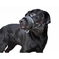 Buy cheap Niteangel Quick Fit Nylon Dog Muzzle, Adjustable Loop, Black L & XL from wholesalers