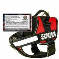 Buy cheap 28 Girth, Red - barkOutfitters Dog Vest Harness with 50 ADA Cards Kit, 22 from wholesalers