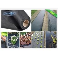 Buy cheap 50 mtr Trade Roll Black Upholstery Weed Barrier Membrane with 10 Years Protection from wholesalers