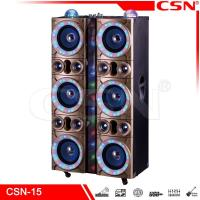 powered Products Speaker party speaker CSN-15