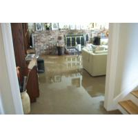 Buy cheap How To Dry Basement After Flood from wholesalers