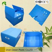 Buy cheap Recyclable Corflute Polypropylene Box PP Foldable Plastic Bo from wholesalers