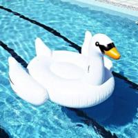 Buy cheap White Summer Lake Swimming Water Swan For Pool Float Lounge Kid Giant Rideable Inflatable Pool Toys from wholesalers
