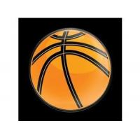 Buy cheap Dome Style 3 Inch Magnetic Badge - Sports Basketball product