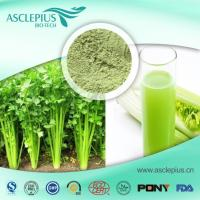 Buy cheap Celery Extract Powder,celery Juice Powder Supplier Wholesale product