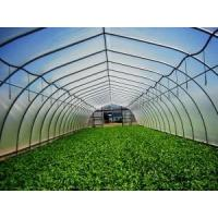 Buy cheap Coldframe Greenhouses from wholesalers