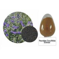 Buy cheap Psoralea Corylifolia Extract from wholesalers