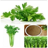 Buy cheap Inorganic pigment Celery Stalk Extract from wholesalers