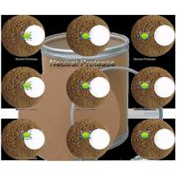 Buy cheap Neutral Protease from wholesalers