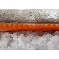 Buy cheap Pacific Salmon product