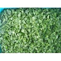 Frozen Spinach RC-FV-015