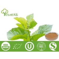 Buy cheap Plant Extracts Mulberry Leaf Extract - Mulberry Flavone 5%;DNJ 1%, 2% from wholesalers