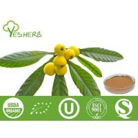 Buy cheap Plant Extracts Loquat Leaf Extract - Corosolic Acid 5%-20% from wholesalers