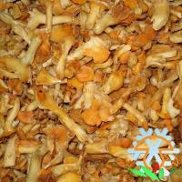 Buy cheap IQF CANTHARELLUS CIBARIUS from wholesalers