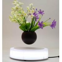 Buy cheap magnetic Floating air bonsai flower tree pot from wholesalers