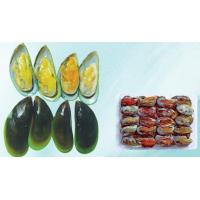 Buy cheap shellfish Product name:Green Lip Mussel from wholesalers