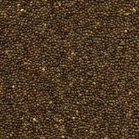 Seeds Brown Perillaseed