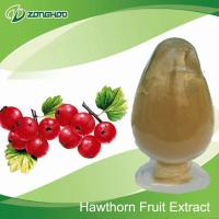 Herbal Extract Hawthorn Fruit P.E.