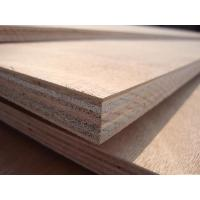 Buy cheap Bintangor plywood Number: 3-1-0012 from wholesalers