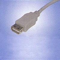 USB Cable Assembly #20081100