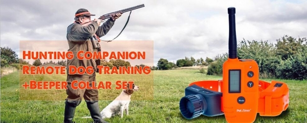 Quality Wellturn 715 500m Hunting Dog Beep Training E Collar for sale