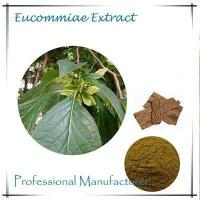 Buy cheap natural Eucommia Ulmoides Extract Chlorogenic Acid 5%-98% from wholesalers